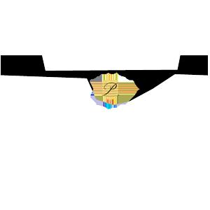 Maison Reignier au Mans vend et livre du champagne Palmer&Co